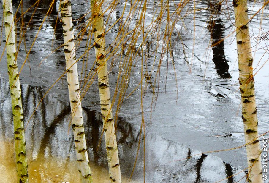 ©Ebi-de-Boer-Pietrasanta-Art-Nature