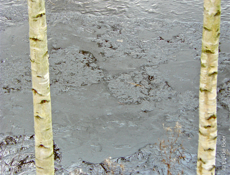©Ebi-de-Boer-Ostfriesland-Eiszeit-Natur