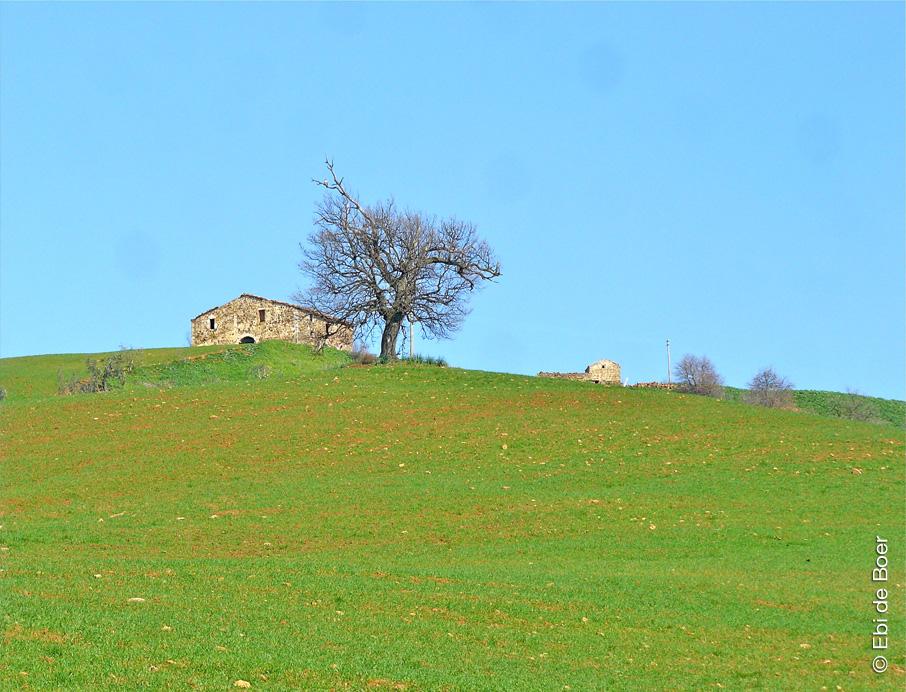 ©Ebi-de-Boer-Pietrasanta-tuscany-nature