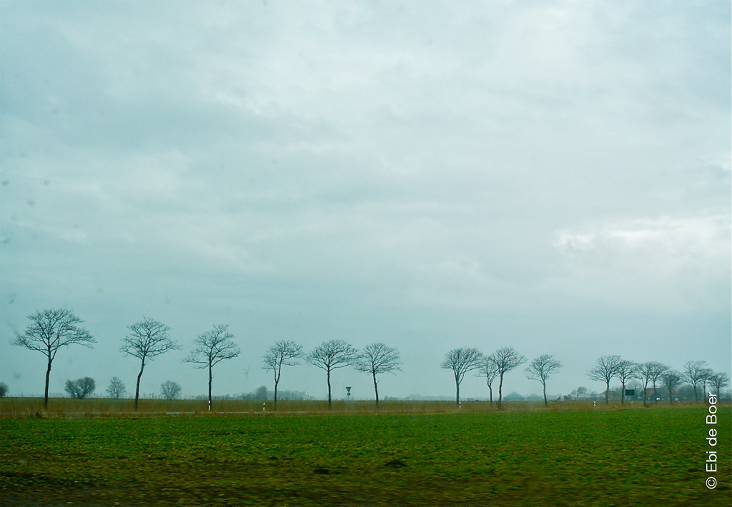 ©Ebi-de-Boer-Ostfriesland-Landschaft-Photo